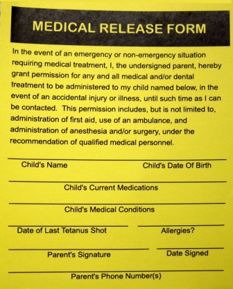 Medical Consent Form For Grandparents  Templates Free Printable